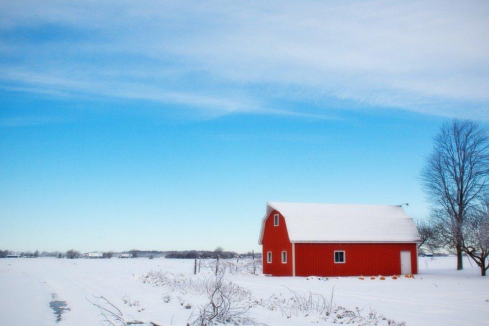 冬の寒い景色